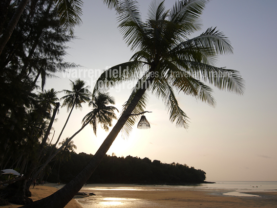 One of Koh Kood's alluring beaches, complete with palms and sunset.