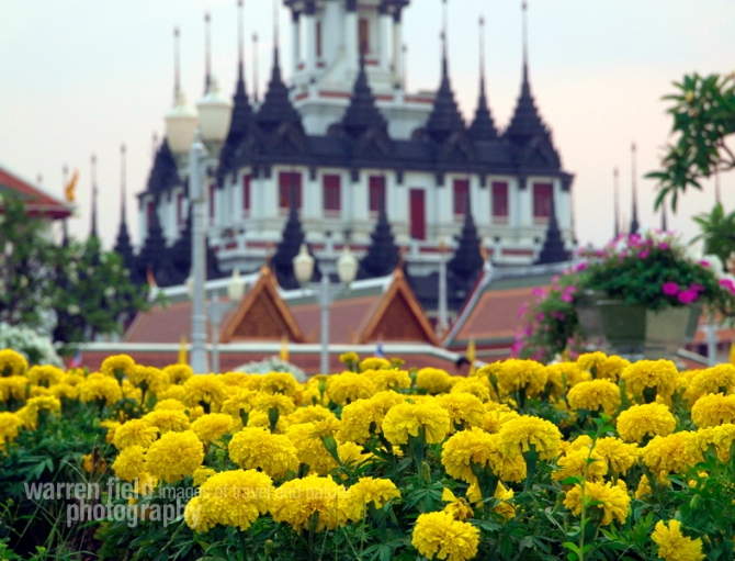 Loha Prasat temple enshrined by marigolds on Macha Bucha Day (February 25th)