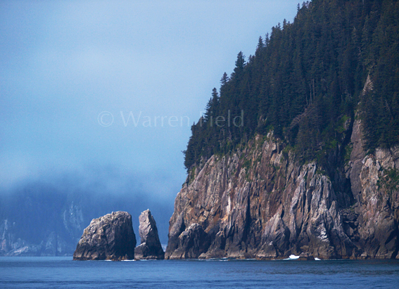 Location 3: Rock outcrops in Resurrection Bay